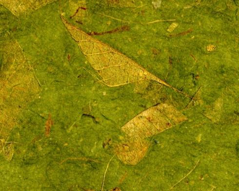 Green Paper 1