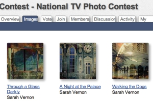 Fine Art America National TV Photo Contest