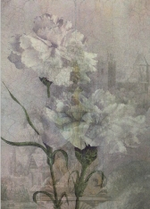 Castle Flowers © First Night Design