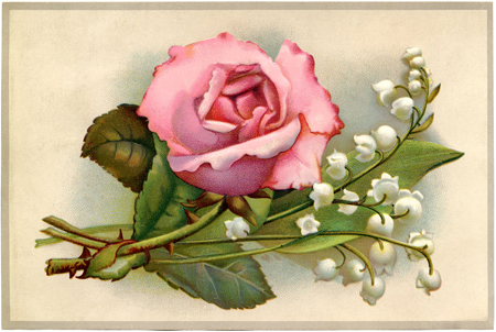 Rose-Lily-Valley-Postcard-GraphicsFairy