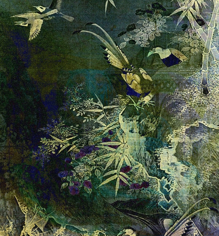 Birds of the Jungle © Sarah Vernon