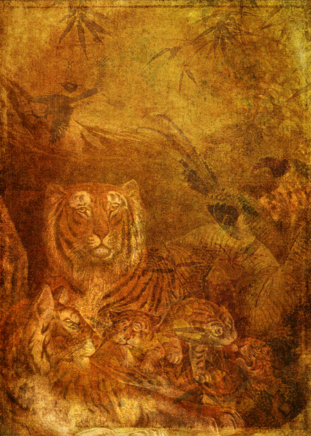 A Family of Lions © First Night Design