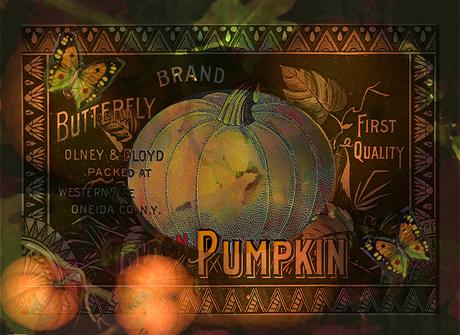 Artful Pumpkins © Sarah Vernon [Redbubble]
