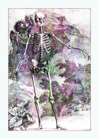 Halloween Skeleton & Cherub © Sarah Vernon