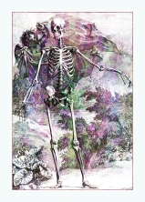 Halloween Skeleton & Cherub © Sarah Vernon