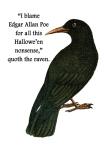 The Cynical Halloween Raven © Sarah Vernon