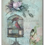 Birdcage Blossom Postcards © Sarah Vernon