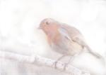 Stay, little cheerful Robin!