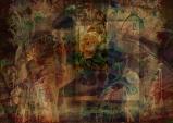 Oriental Glimpse © Sarah Vernon