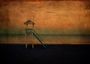 The Lookout © Sarah Vernon Buy at Crated