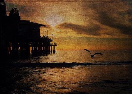Night Landings © Sarah Vernon