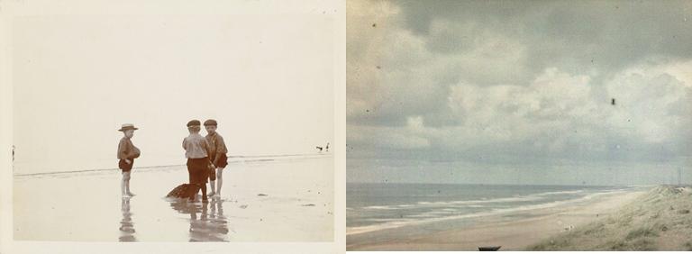 beachboysblog