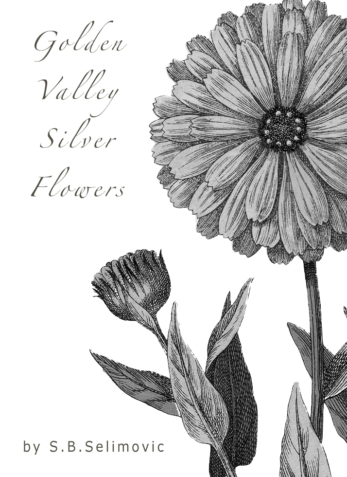 #photorehabcovermakeover Week 13 Golden Valley Silver Flowers