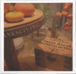 thanksgiving_hideaway_standard_cocktail_napkin