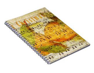 Buy Spiral Notebooks