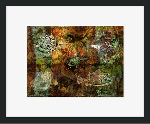 Buy a framed print from Crated © Sarah Vernon