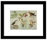 Framed print from Fine Art America