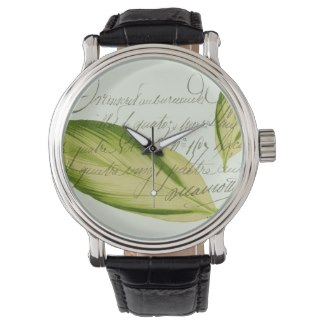 Green Leaf Watch from Zazzle © Sarah Vernon