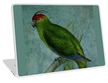 Parrot Fashion Laptop Skin © Sarah Vernon - Buy at Redbubble