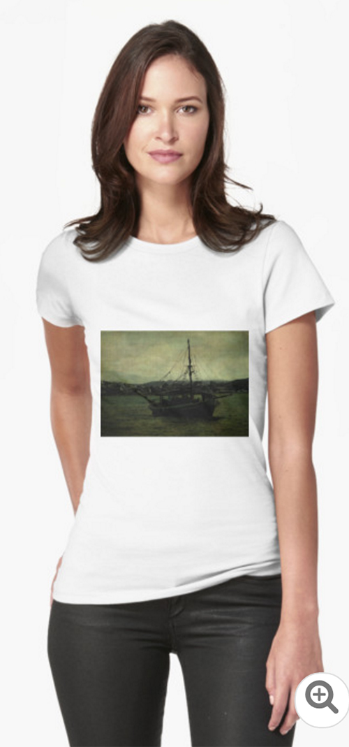 Homecoming Pirate Women's T-Shirt at Redbubble © Sarah Vernon