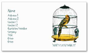 parrot_in_a_gilded_cage_double_sided_standard_business_cards_pack_of_100-r297e2c23650c46f7bc0360d41b87f43a_i579t_8byvr_325