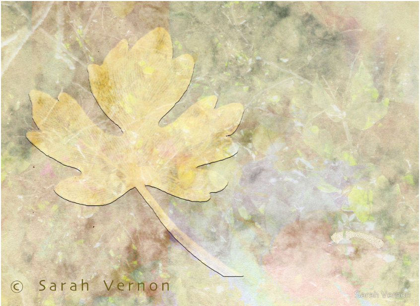Autumn Fall © Sarah Vernon prints & home decor at Redbubble