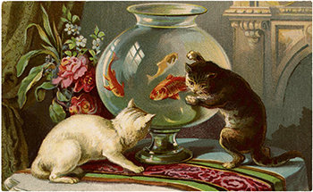 Cats-with-Goldfish-Clip-Art-GraphicsFairyblog