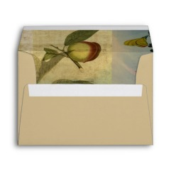 chinese_lantern_surrounded_envelope-rc007f85215d14534b1139eca0bf6da76_kqb93_8byvr_630
